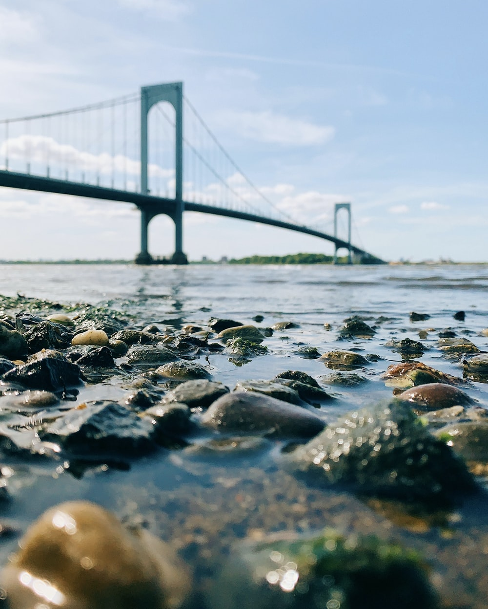 gray rocks on beach shore during daytime