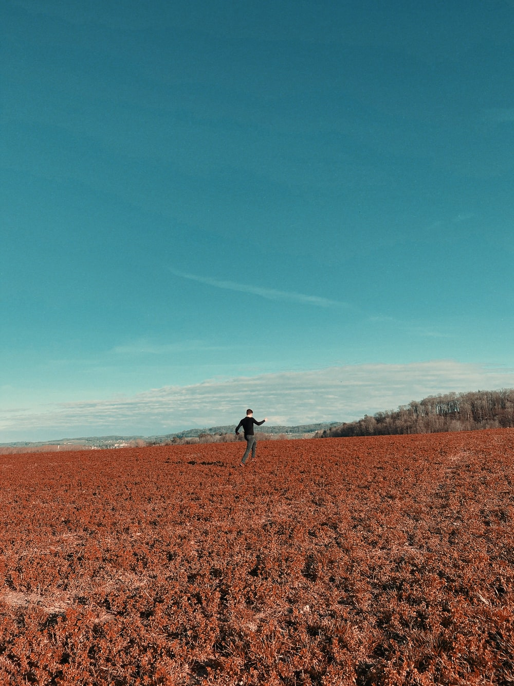 person walking on brown field during daytime