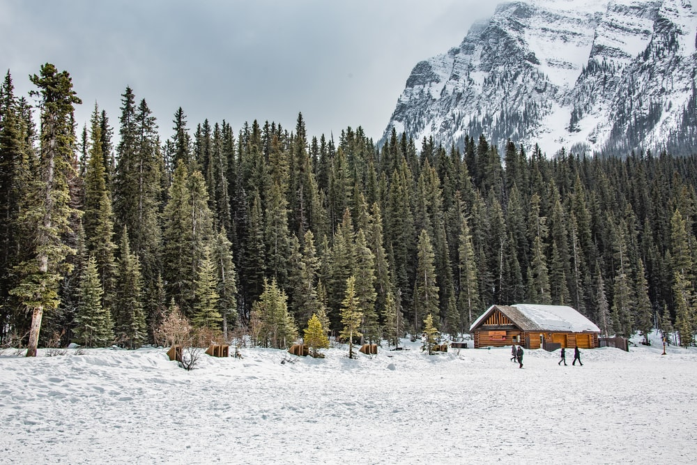 brown wooden house on snow covered ground near green trees and mountain during daytime