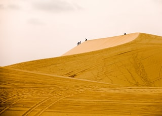 people walking on sand dunes
