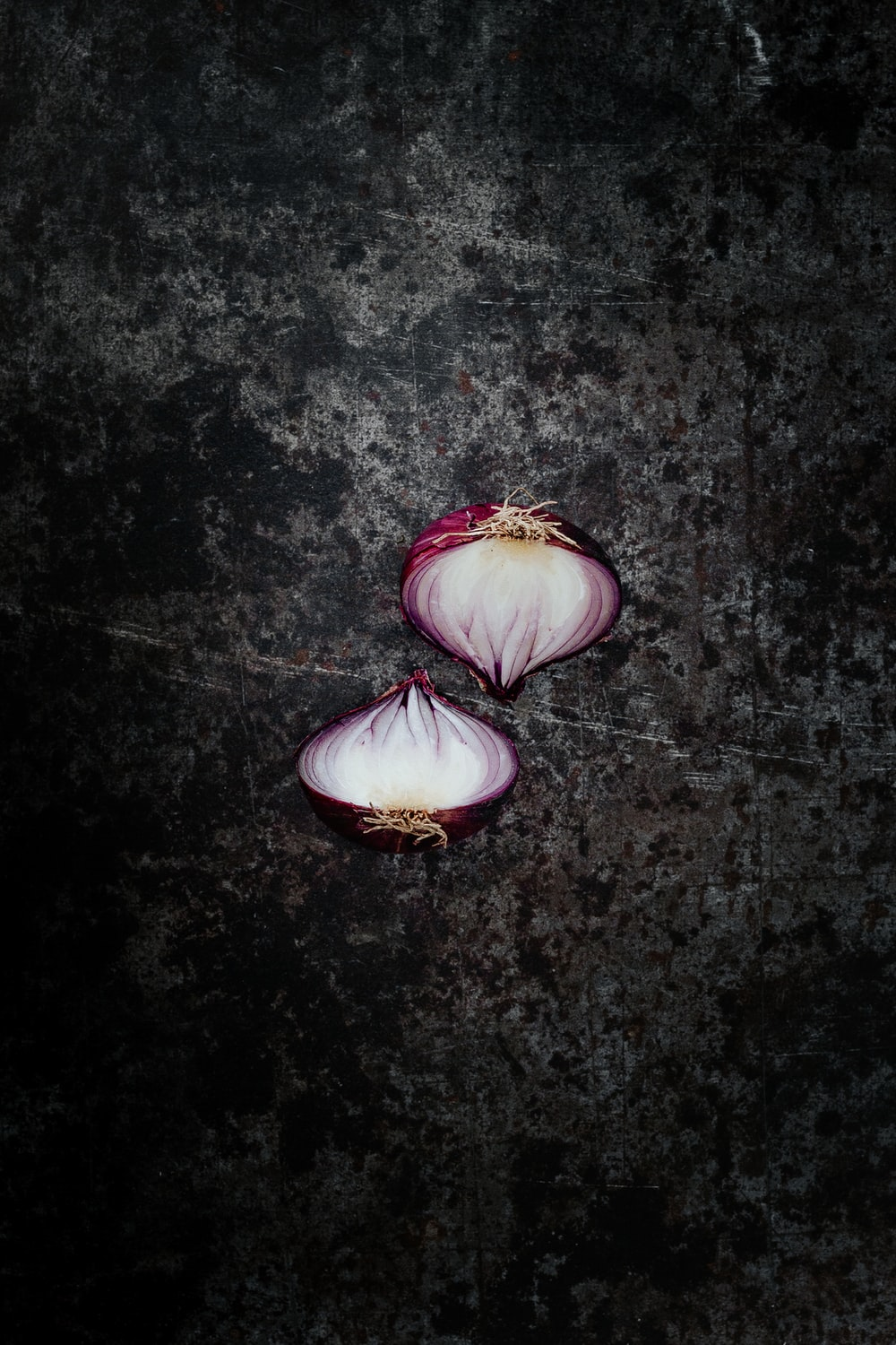 purple and white flower on black surface