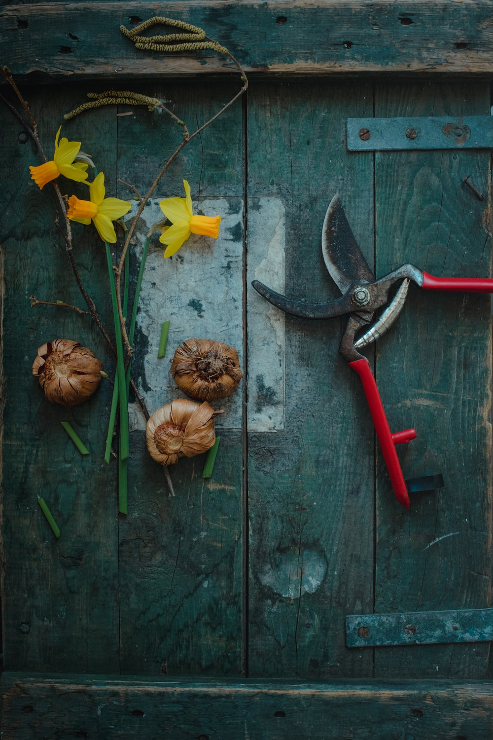 red handle gray and red handle hammer beside brown pine cone and yellow flowers