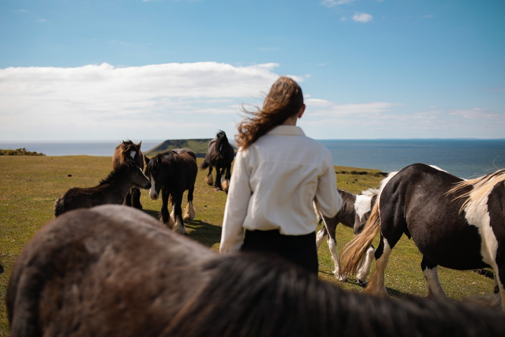 woman in white long sleeve shirt standing beside black horse during daytime