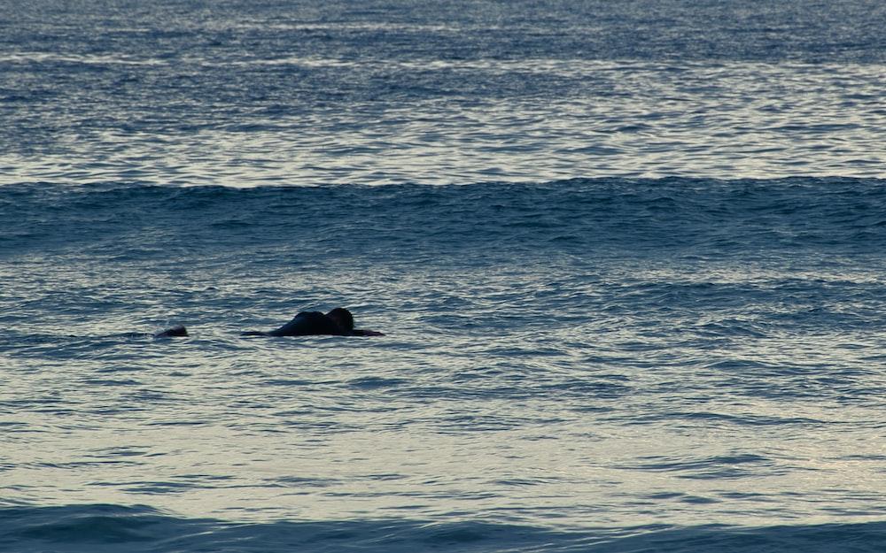 man swimming on sea during daytime