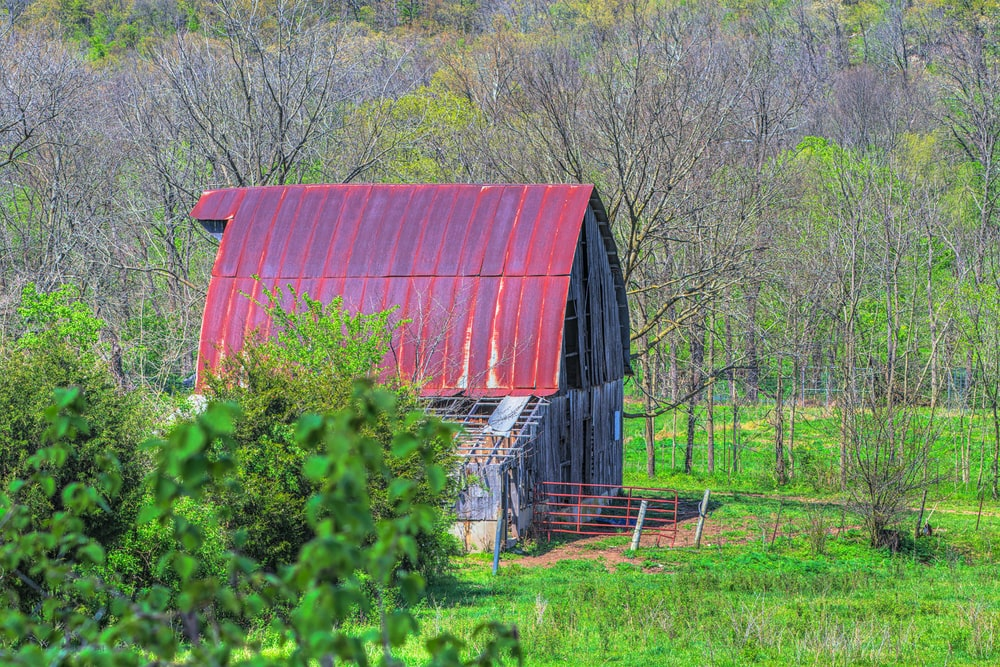 red wooden barn near green trees during daytime