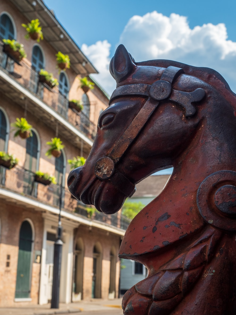 brown wooden horse statue near brown concrete building during daytime