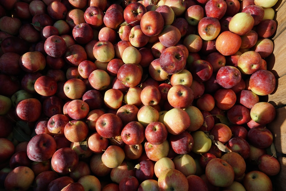 red and brown round fruits