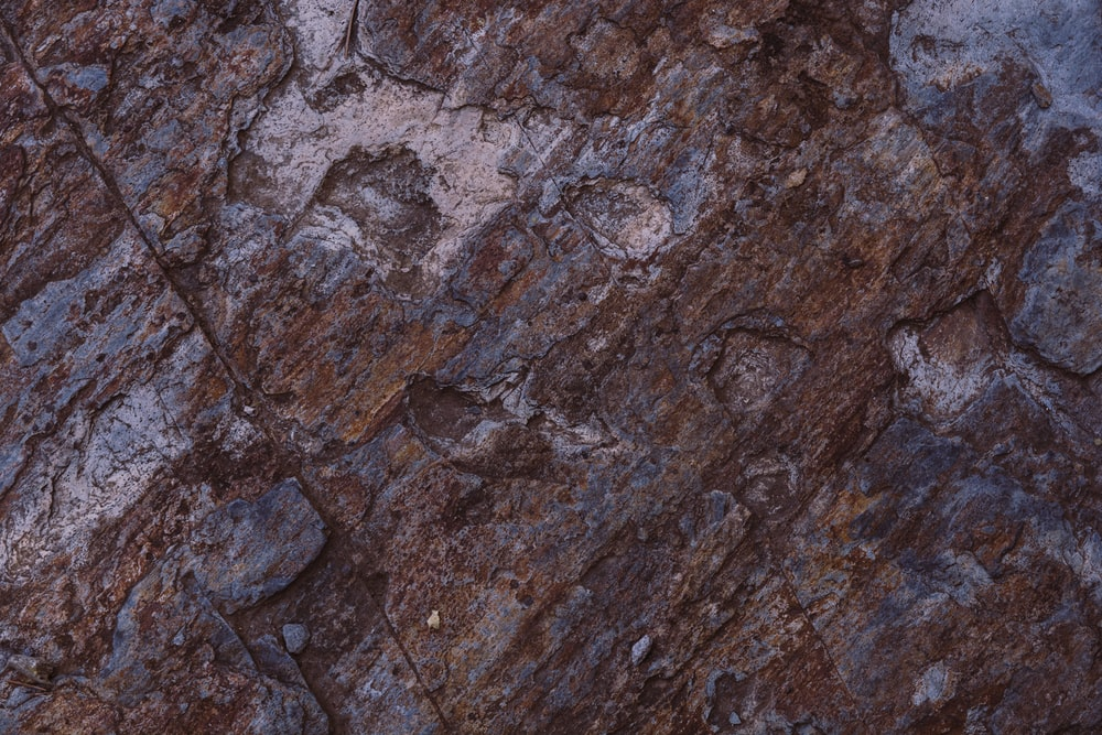 brown and gray rock fragment