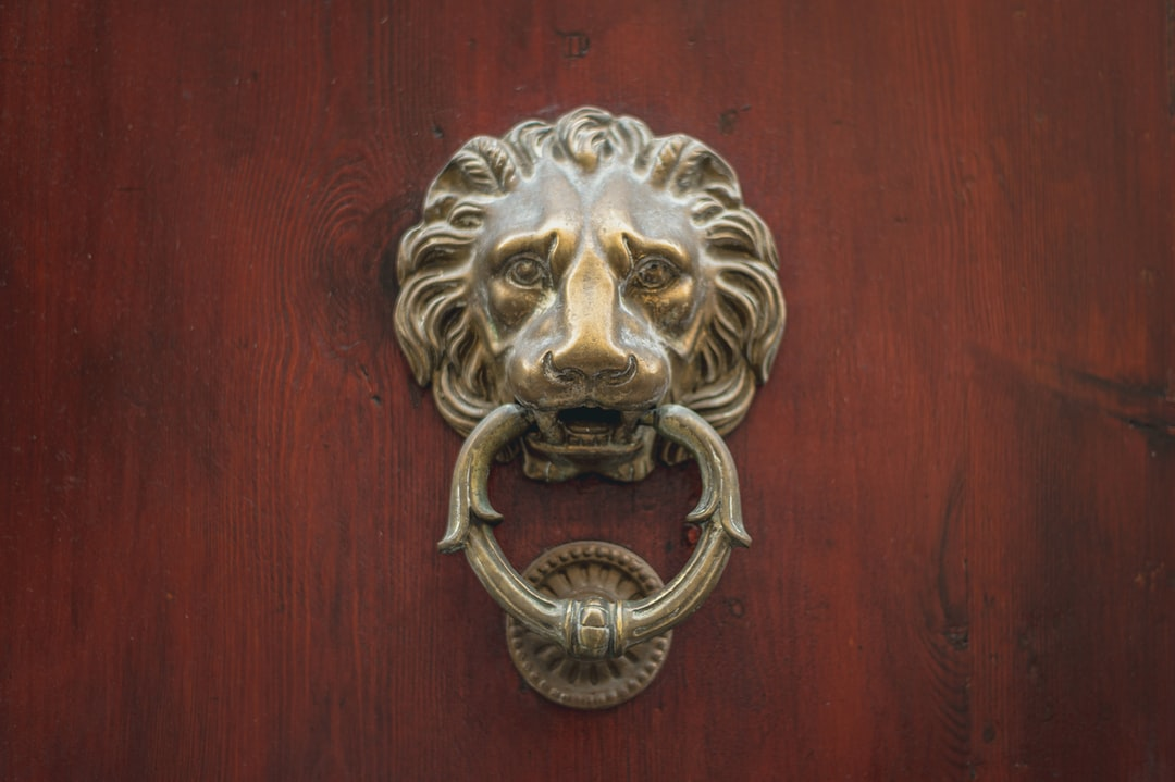 Door knocker in the form of a lion's face.