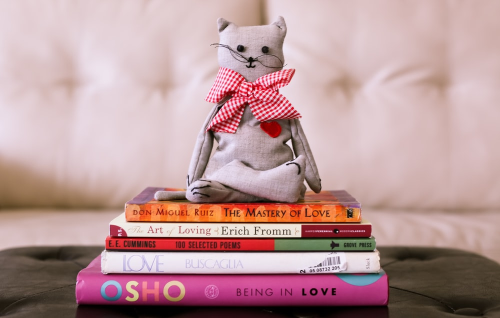 gray cat plush toy on book