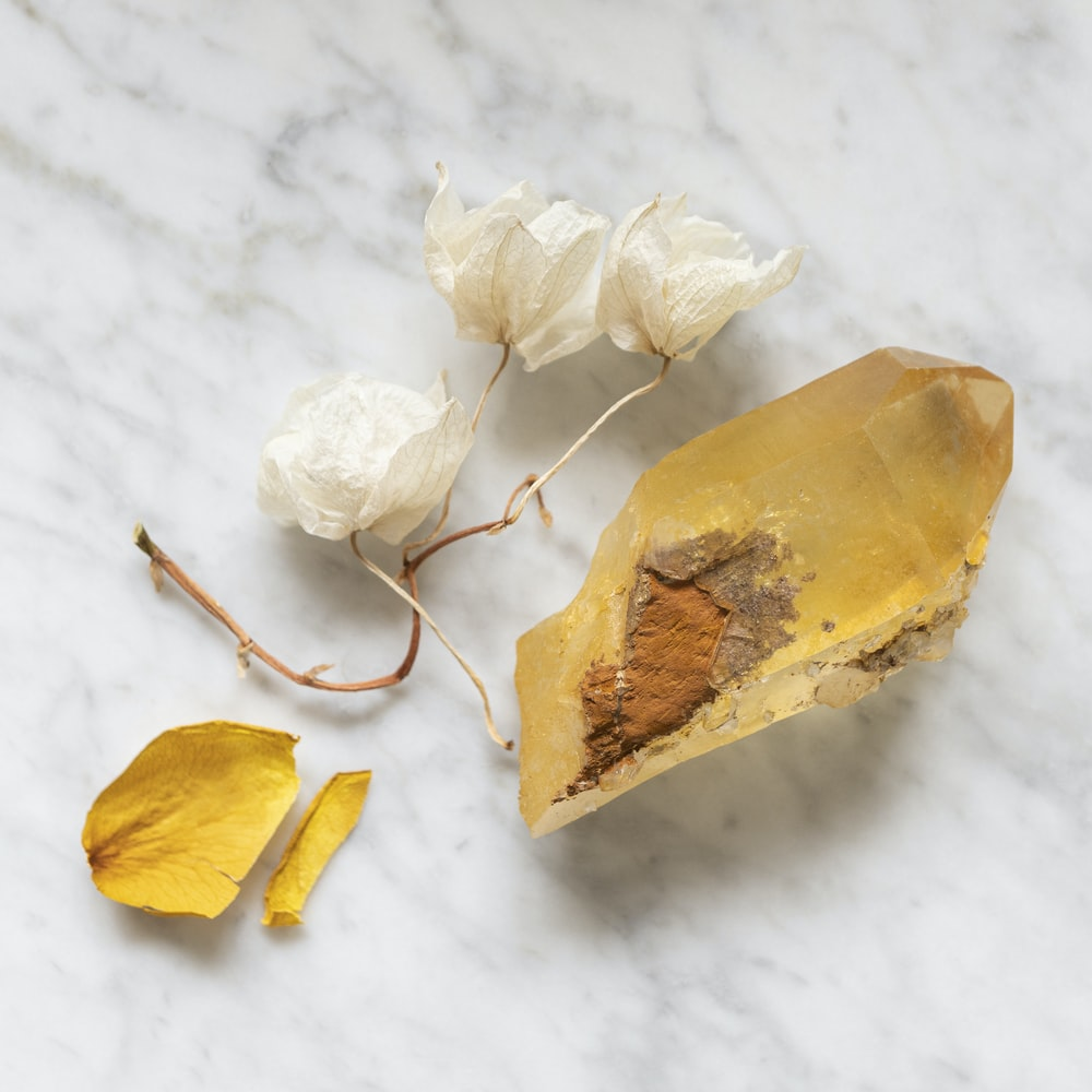 yellow dried leaf on white snow