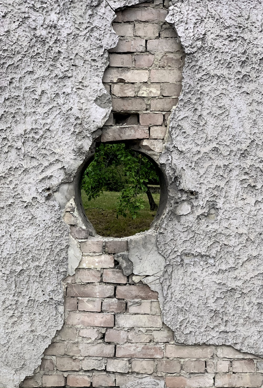 grey concrete brick wall with green grass