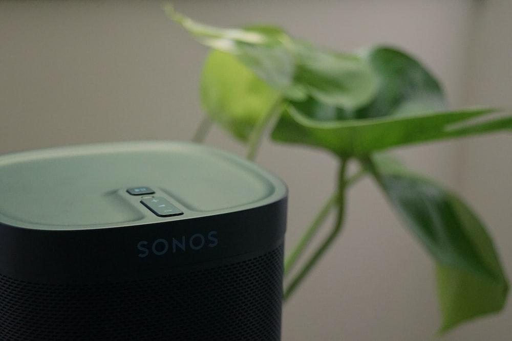 black and gray portable speaker