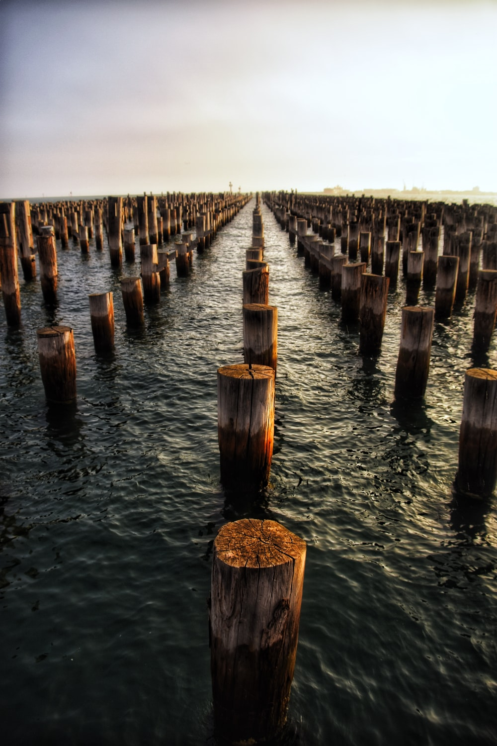 brown wooden posts on water during daytime