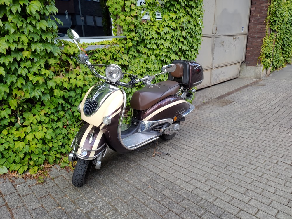 black and yellow motor scooter parked beside green plants during daytime
