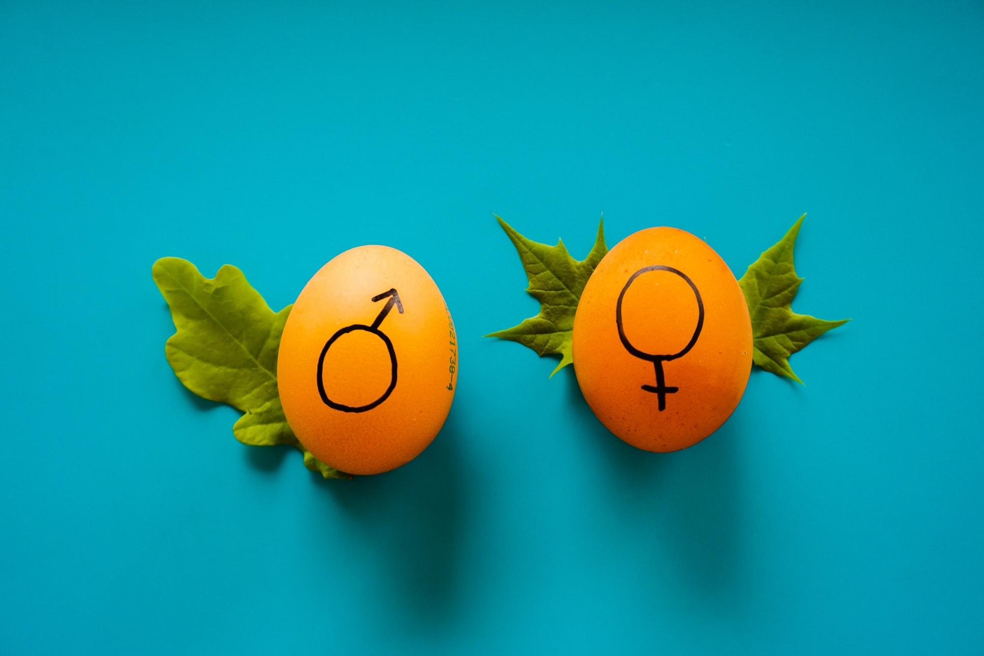 Gender identity to replace sex