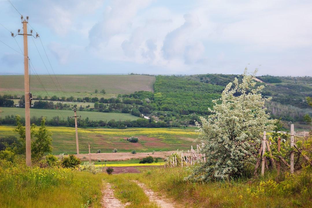 Fields and abandoned vineyard near the capital of Moldova
