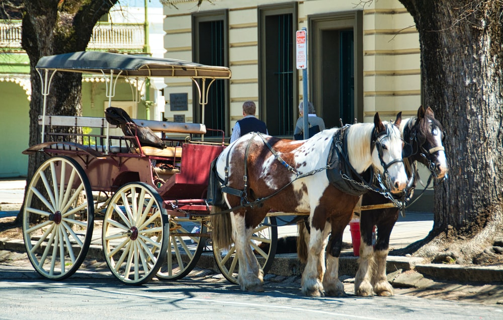 2 brown horses with carriage in front of building during daytime