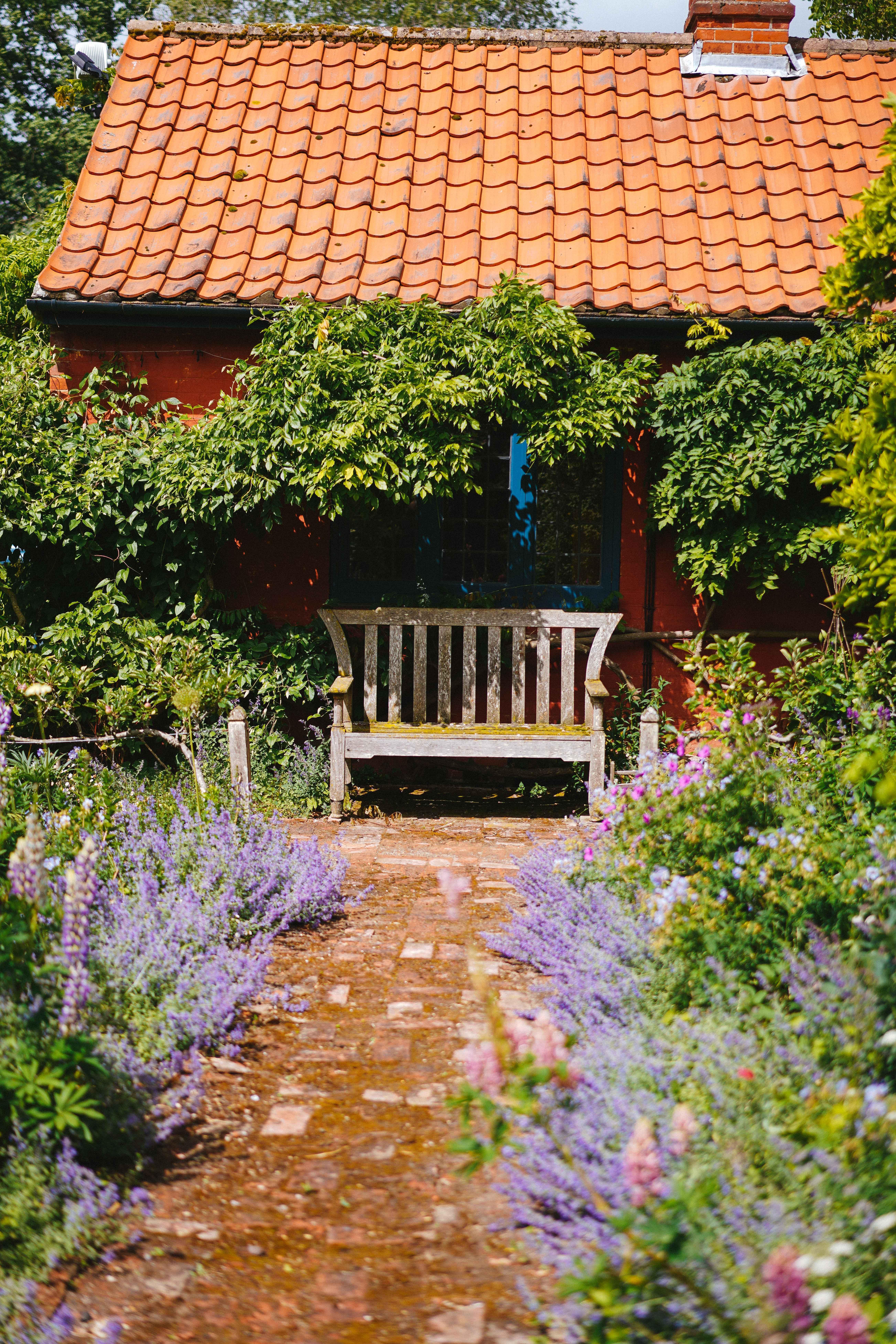 brown wooden bench near purple flowers