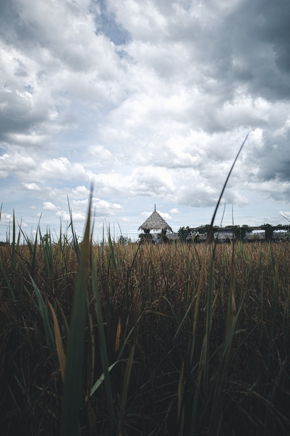 brown and black house under white clouds during daytime