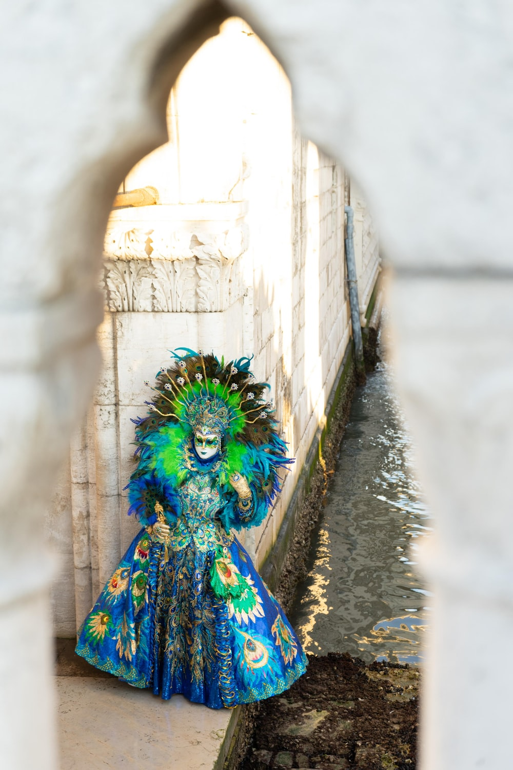 blue and green peacock on gray concrete stairs