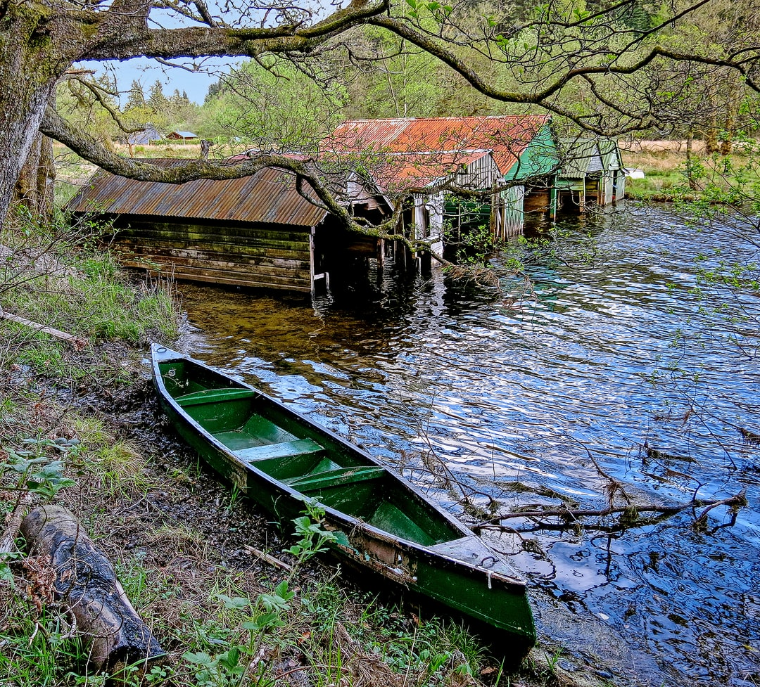 Loch Ard, Near Aberfoyle, Scotland, UK