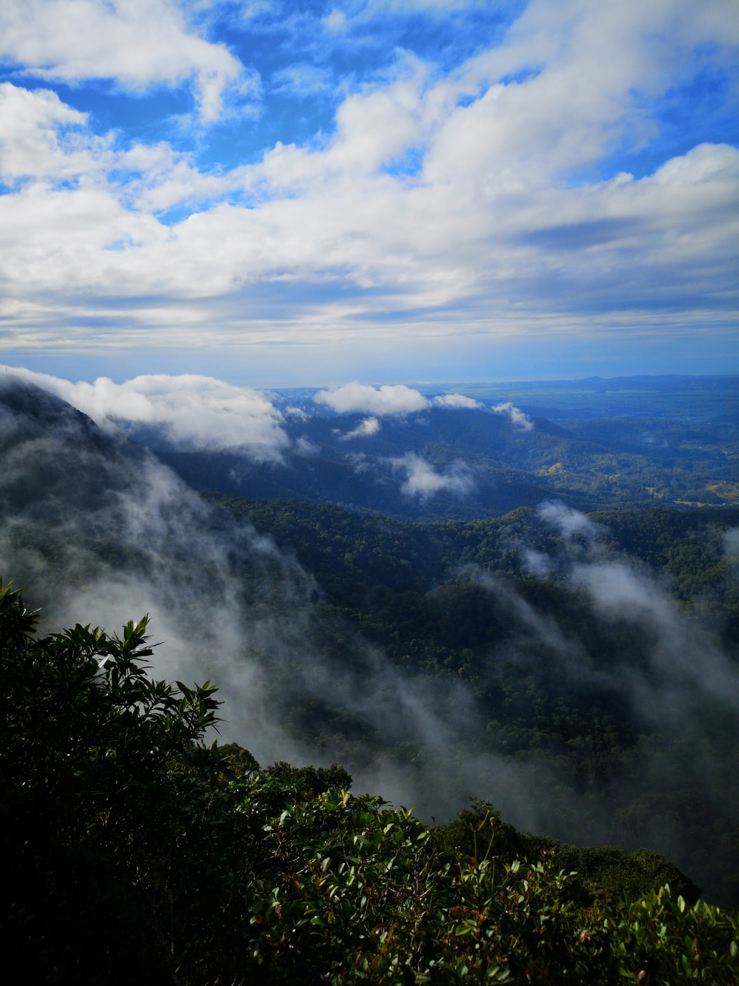 Clouds being pushed up and over Springbrook National Park by southerly trade-winds. Viewing Easterly over the coast of QLD/NSW coast onto the pacific ocean.