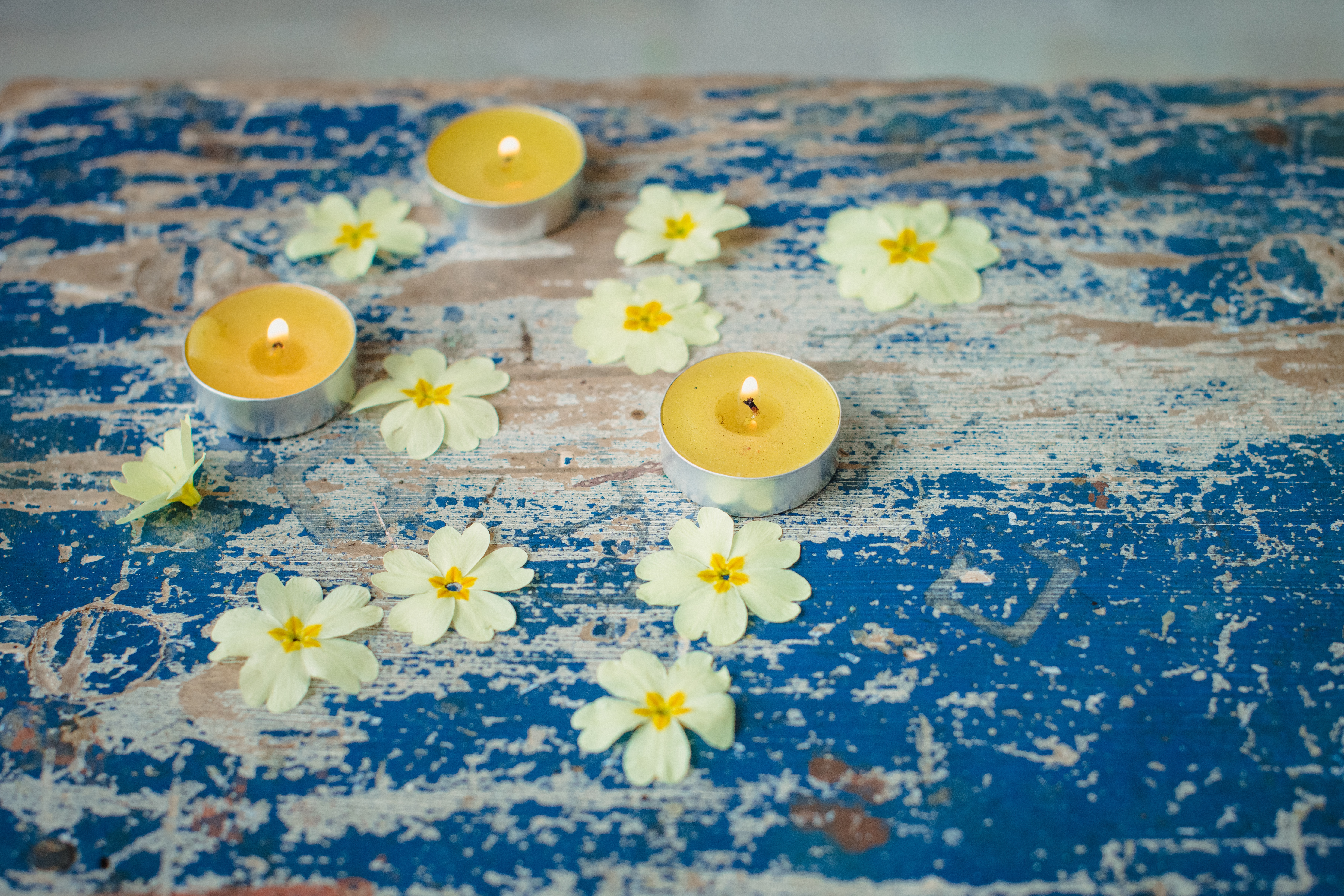 yellow tea light candles and yellow primrose flowers on distressed blue wooden table