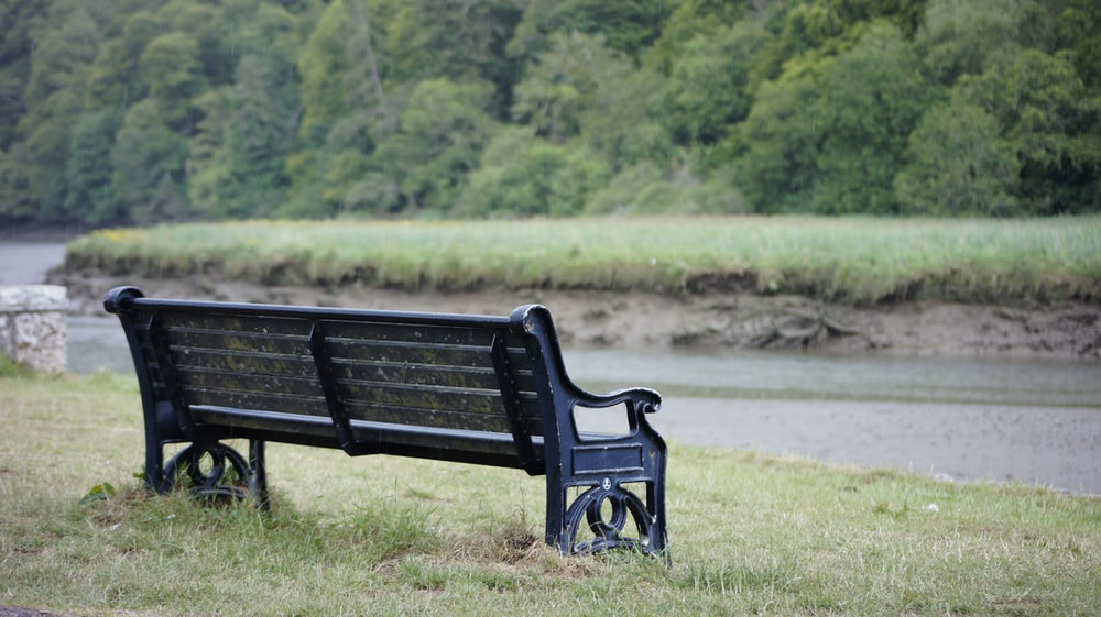 black wooden bench on green grass field during daytime