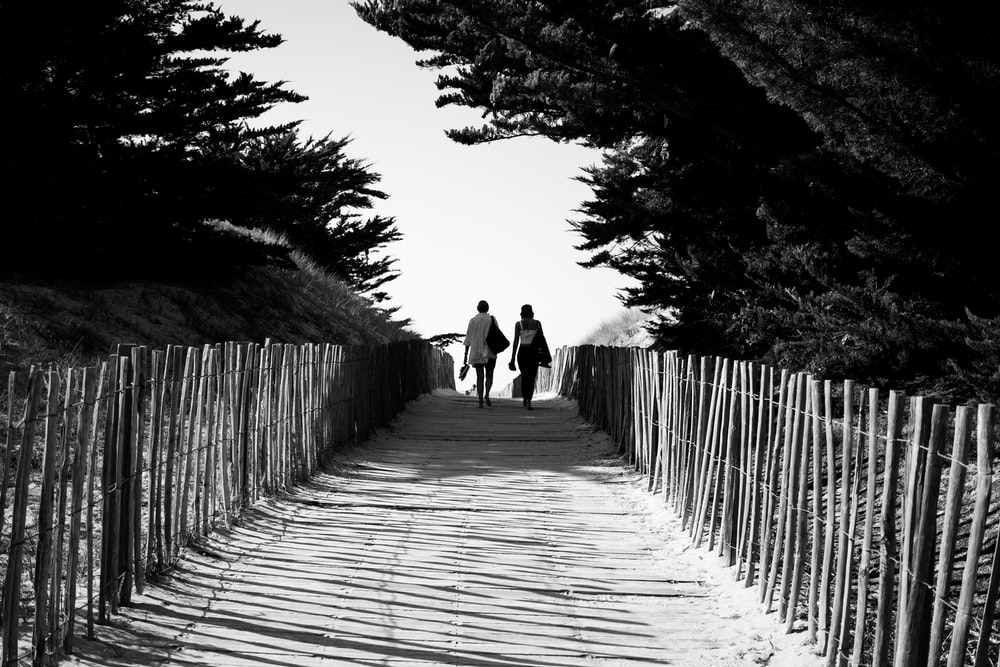 grayscale photo of 2 person walking on wooden pathway