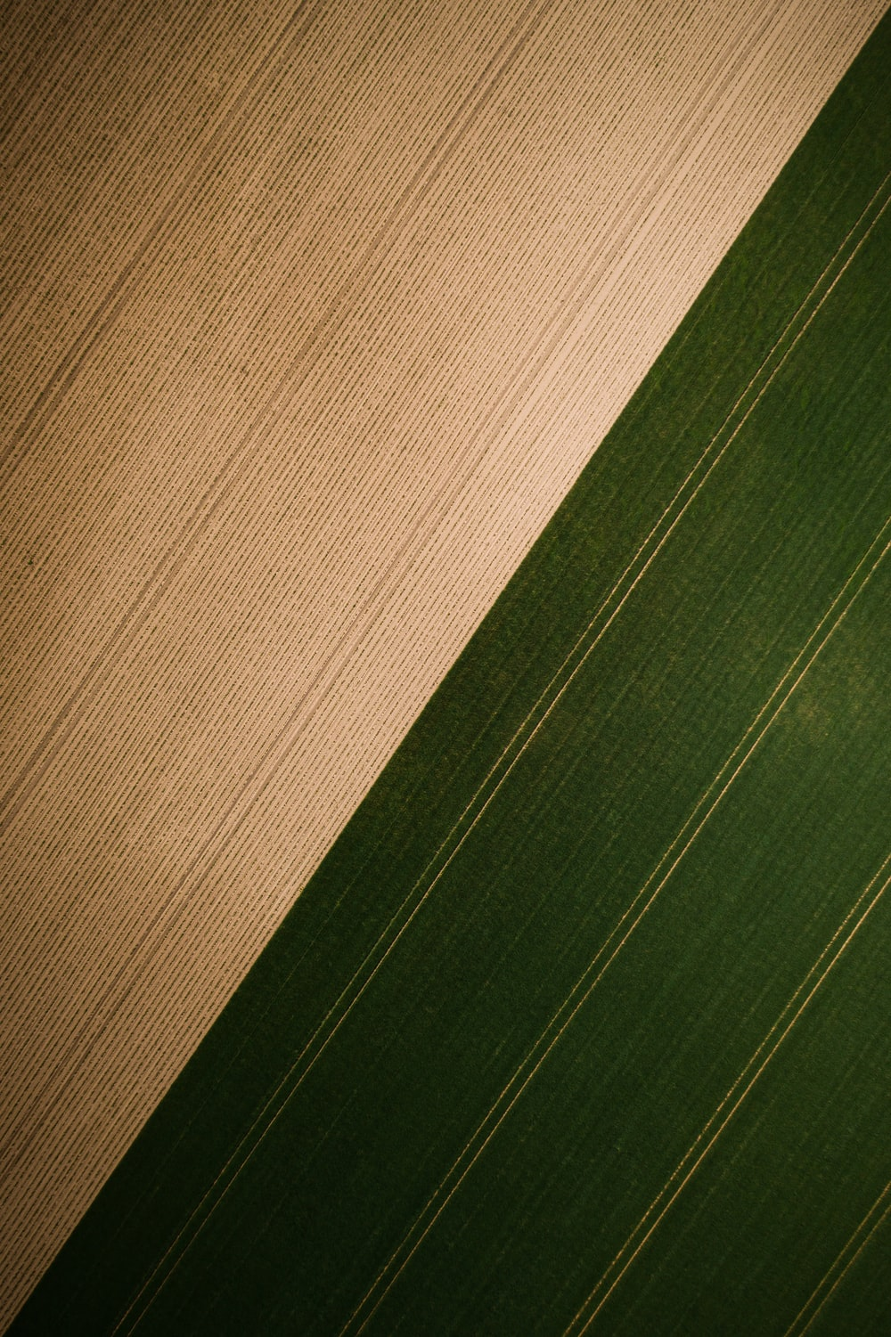 brown and green striped textile