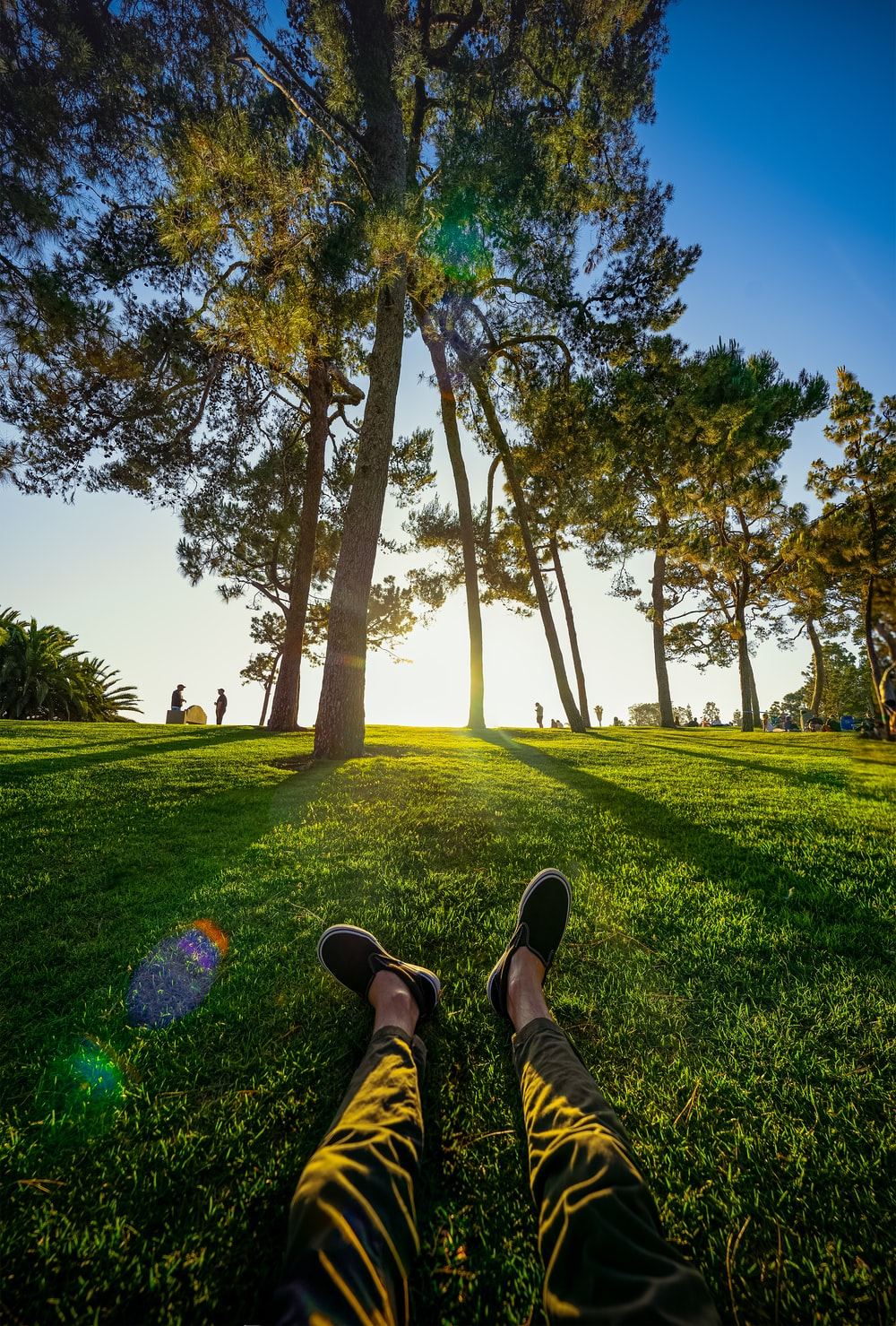 person in black shoes sitting on grass field near trees during daytime
