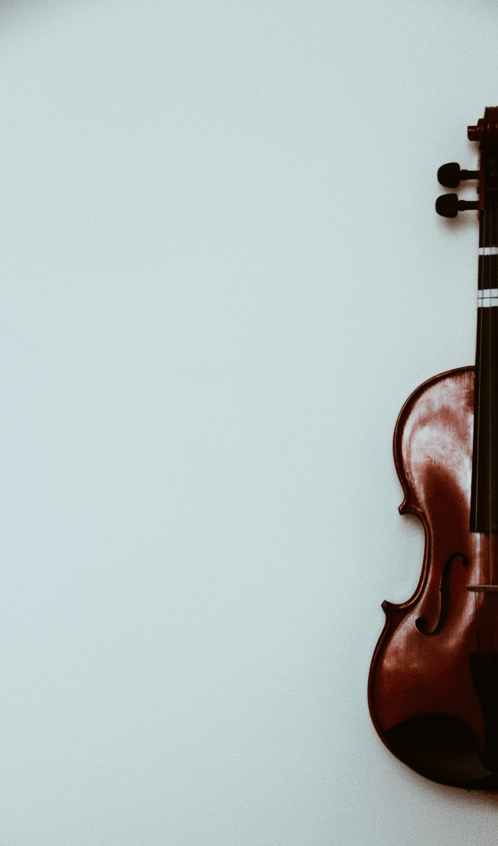 brown violin on white wall