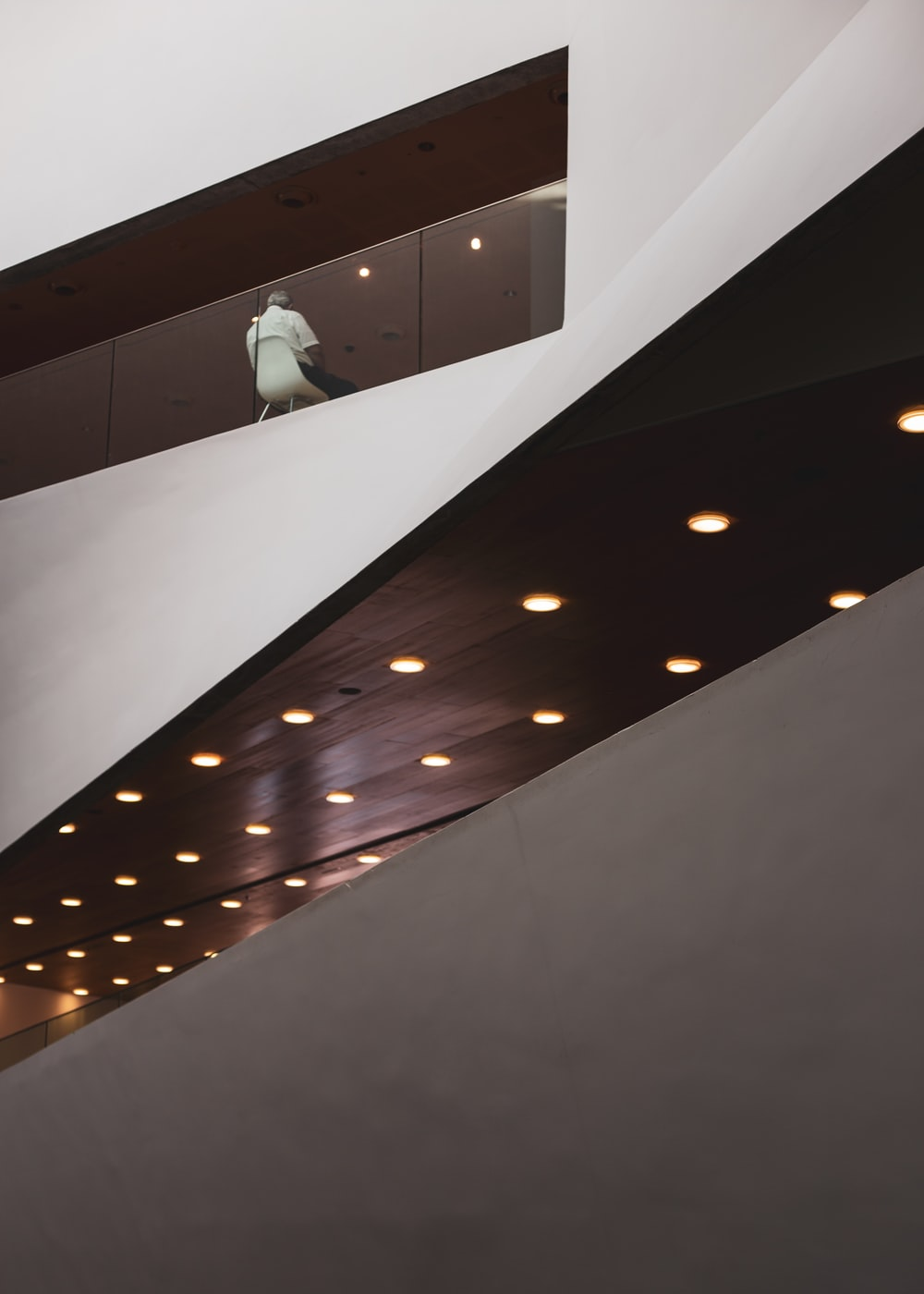 white bird on white wooden wall