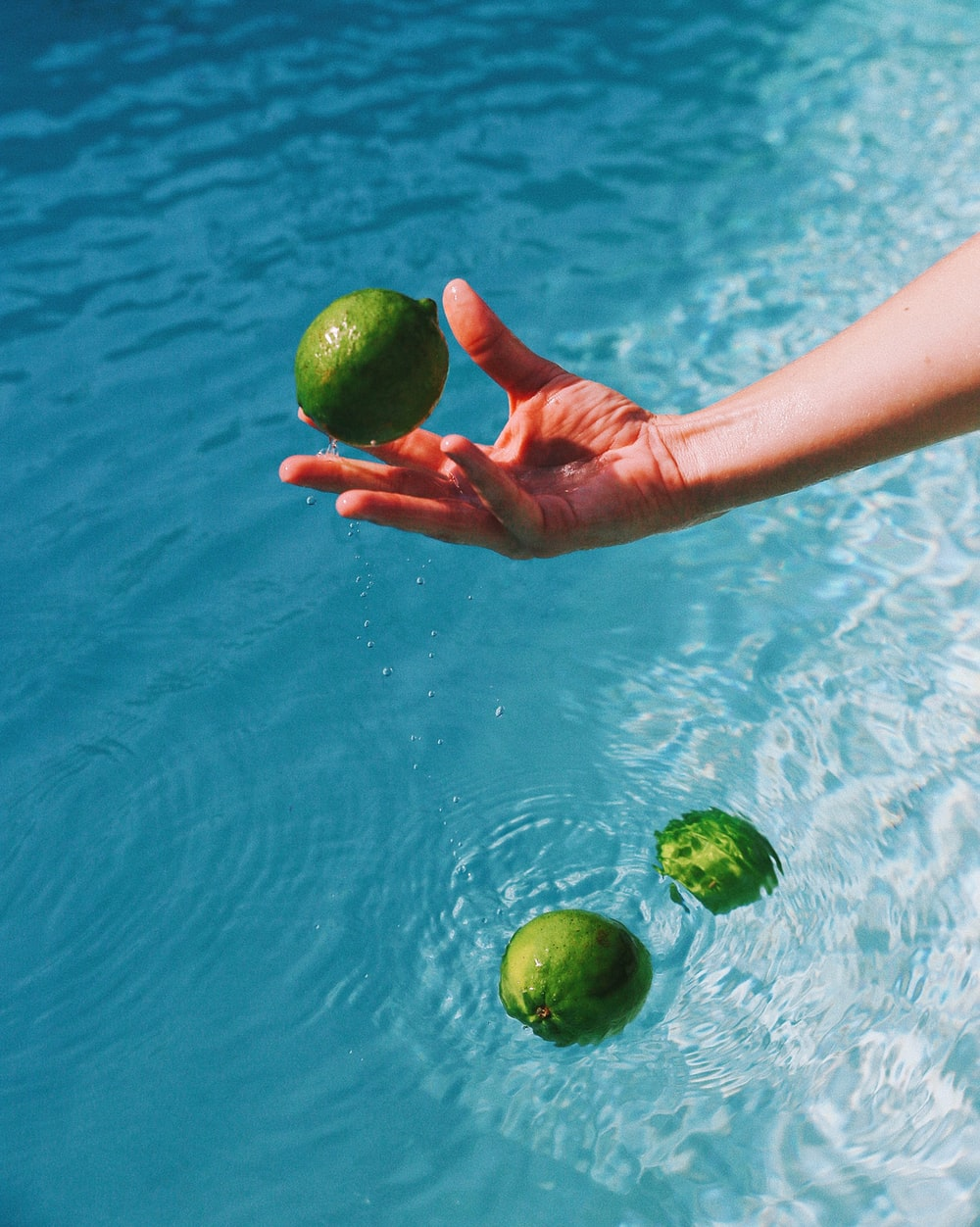 person holding green round fruit