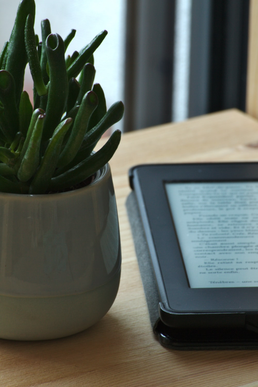 black e book reader beside green cactus plant