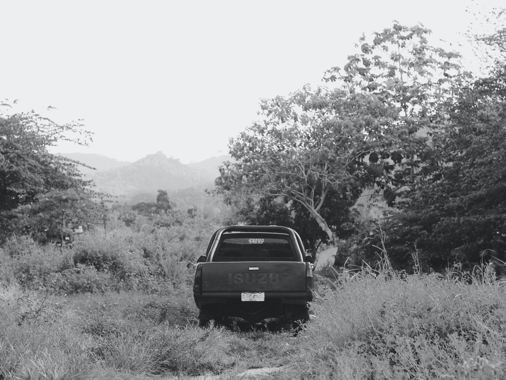 grayscale photo of car on grass field