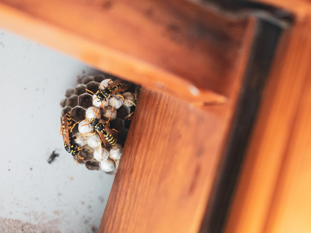 silver and black beads on brown wooden drawer
