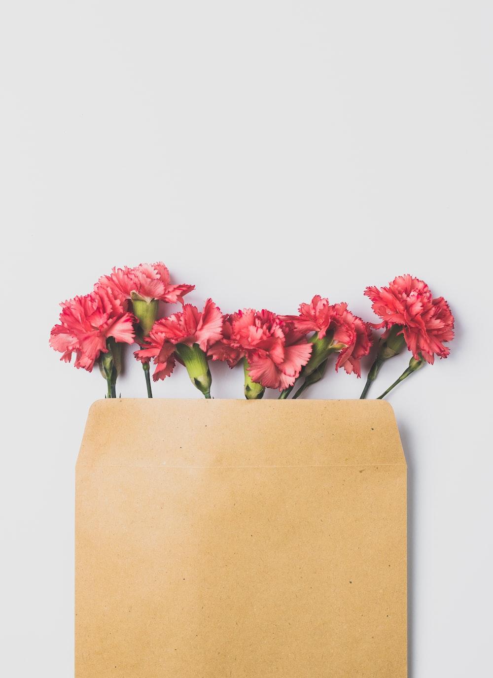 pink roses on brown paper bag