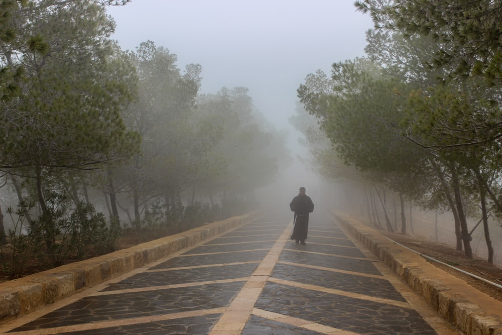 person in black jacket walking on wooden pathway during foggy weather