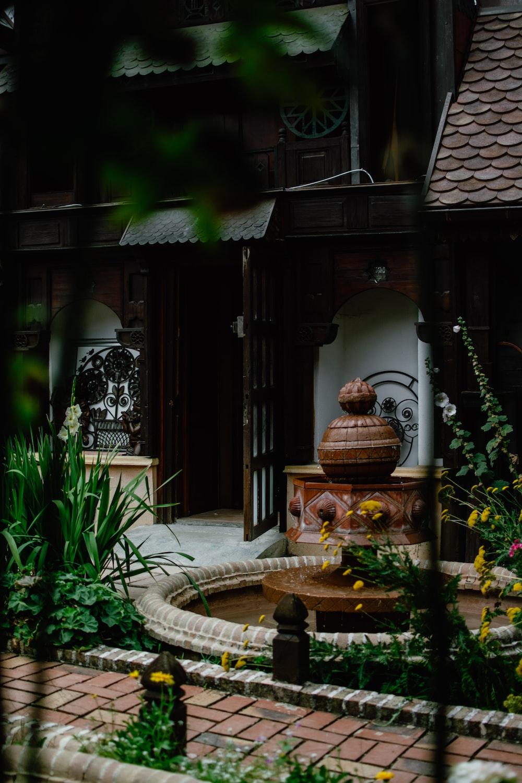 brown wooden door near green plants