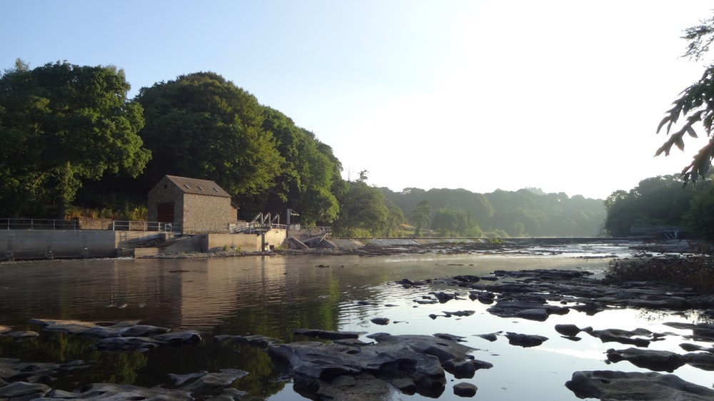 brown wooden house on rocky shore near green trees during daytime