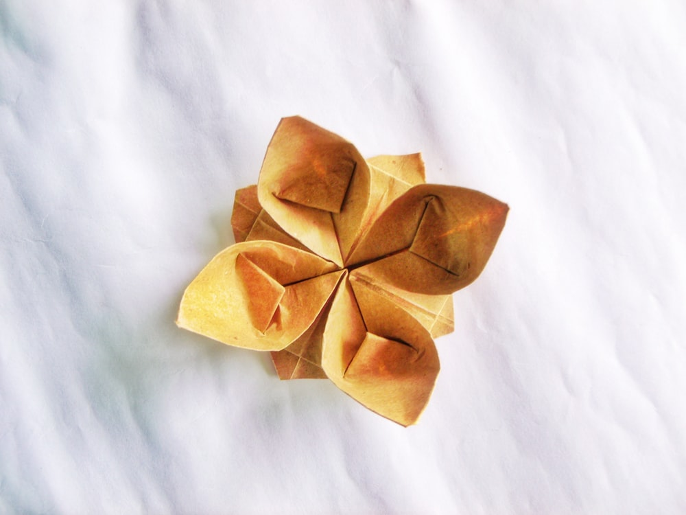 brown paper flower on white textile