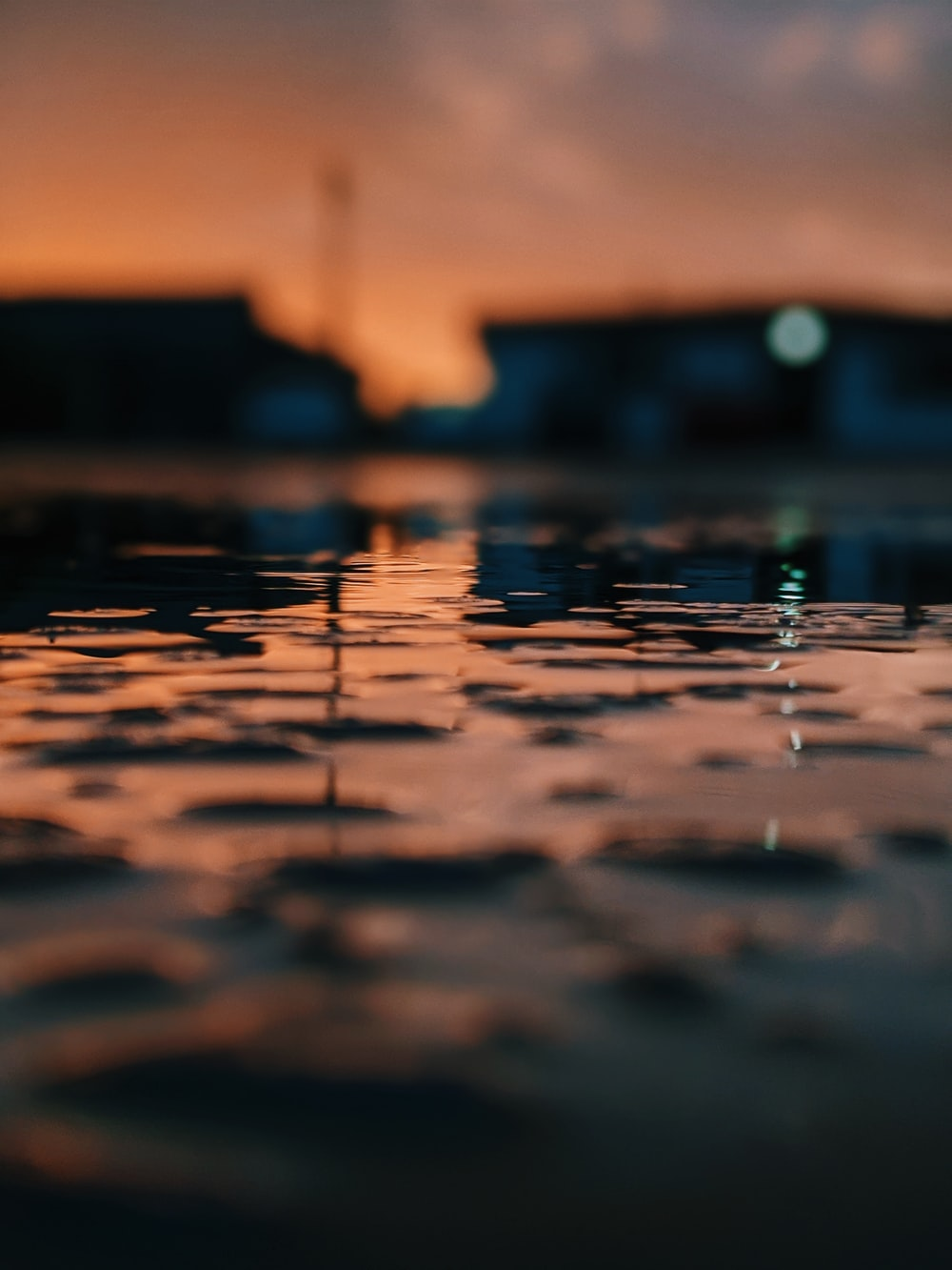 water droplets on the ground during sunset