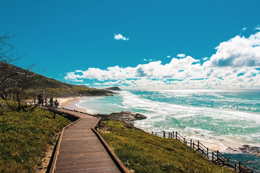 brown wooden pathway near sea under blue sky during daytime