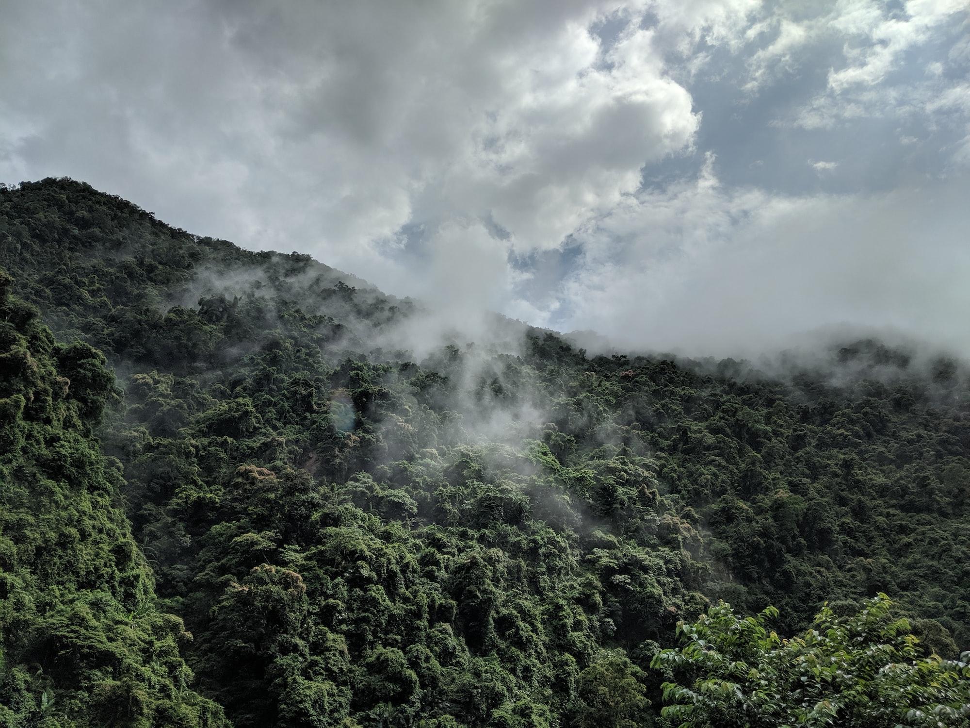 Evaporation after a heavy rainfall. Wulai, Taiwan.