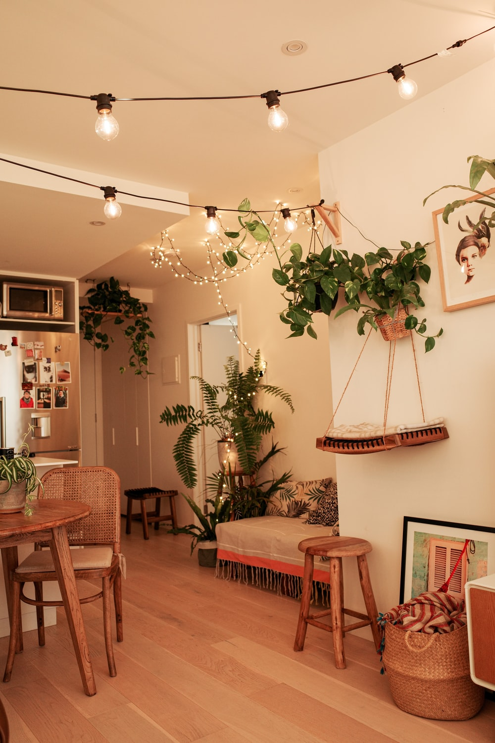green indoor plant near brown wooden table
