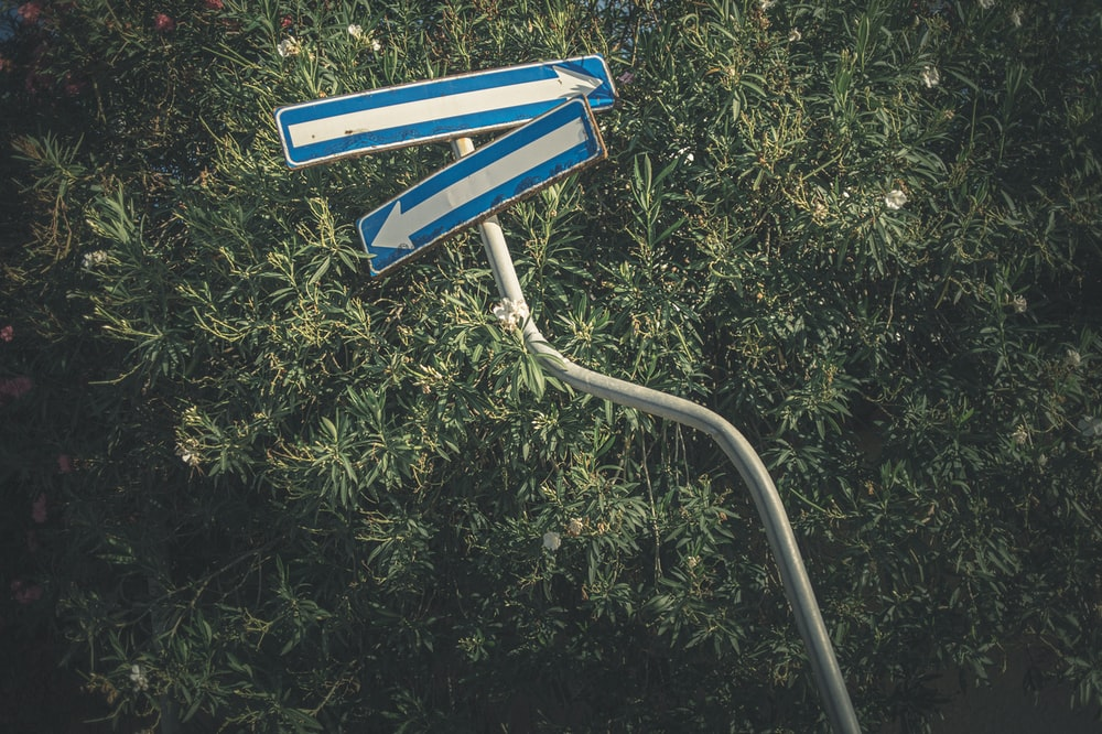 blue and white arrow sign on green grass