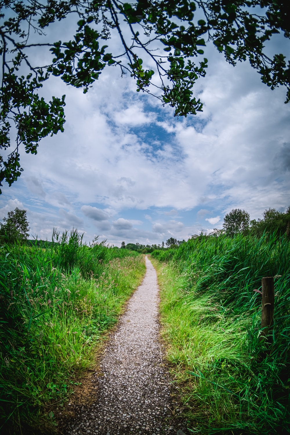 pathway between green grass under cloudy sky during daytime