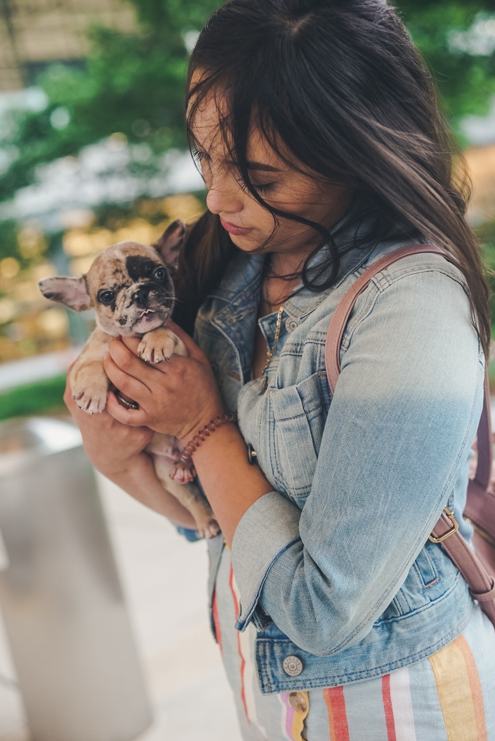 woman in blue denim jacket holding brown and black short coated puppy